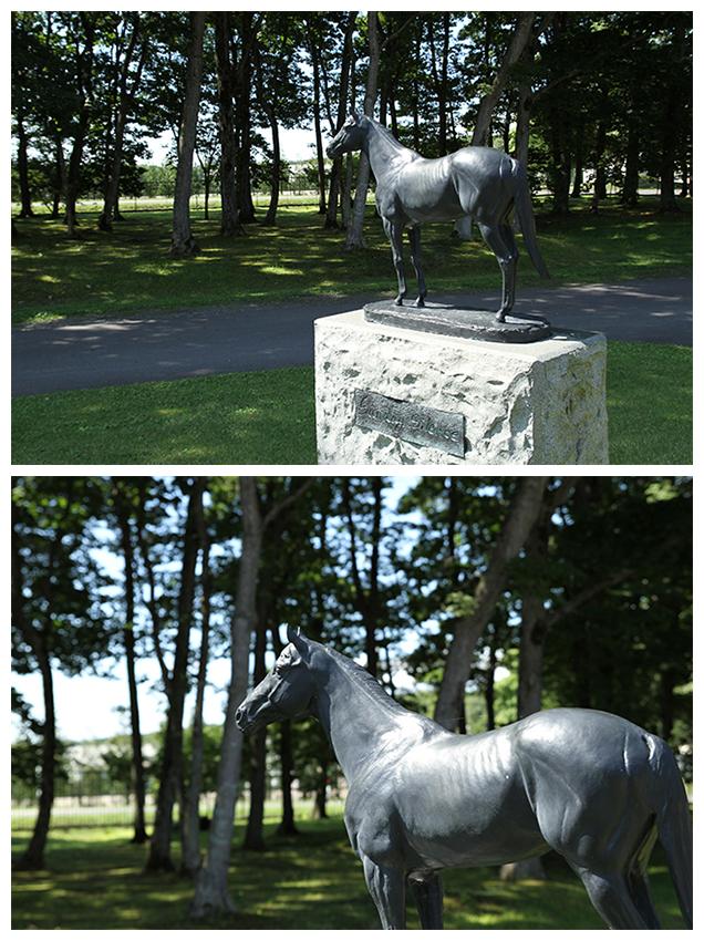 サンデーサイレンス( 1986年 - 2002年 )の像がお出迎えしてくれました。