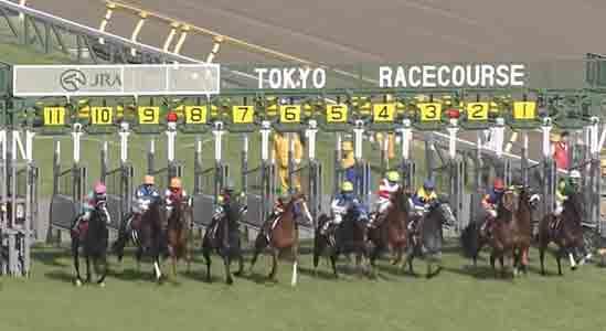 青葉賞レース